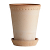 Rosa Helena Pots High (saucers available separately)
