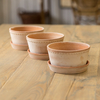 Rosa Helena Saucers for the Low/Dish Pots (available separately)