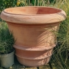 Italian Imprunetino Terracotta Pot, Medium