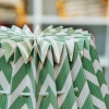 Fold Out Paper Lampshade Wiggly Green