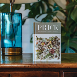 Prick - Cacti and Succulents: Choosing, Styling, Caring - Gynelle Leon