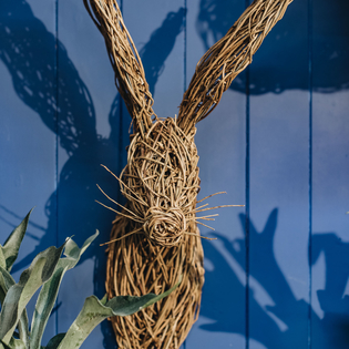 Willow Hare Head