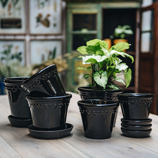 Black Glazed Copenhagen Pots with optional Saucers