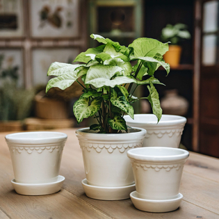 White Glazed Copenhagen Pots with optional Saucers