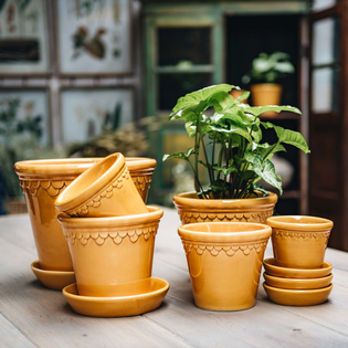 Amber Yellow Glazed Copenhagen Pots with optional Saucers