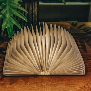 Wooden Folding Book Lights Walnut