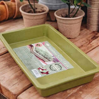 Bamboo Seed Tray in Sage Green