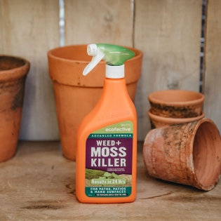 Eco Friendly Weed and Moss Killer