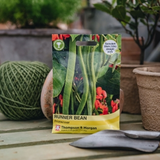 Runner Bean 'Prizewinner' seeds - Thompson & Morgan