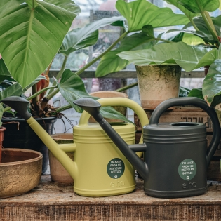 Sustainable Watering Cans