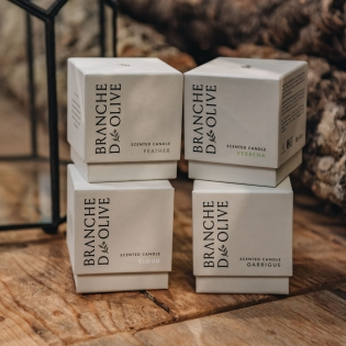 Branche D'Olive Candles