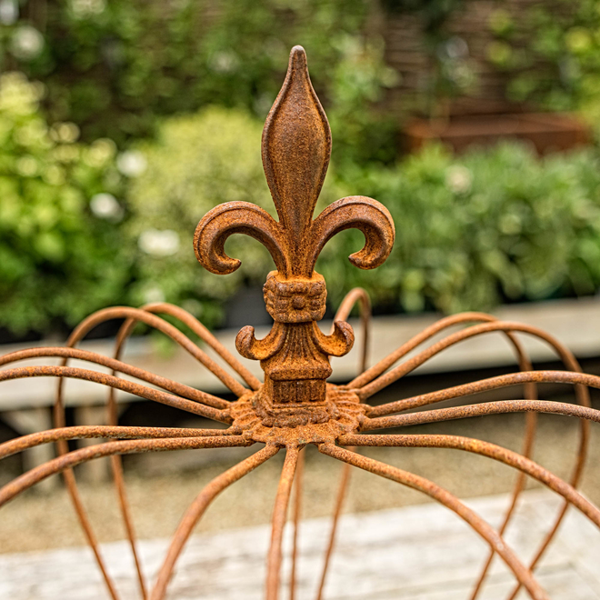 Crown Plant Support – Large detail