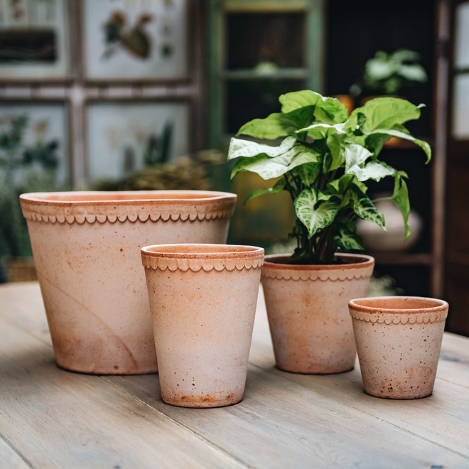 Rosa Helena Pots (saucers and High Pot available separately)