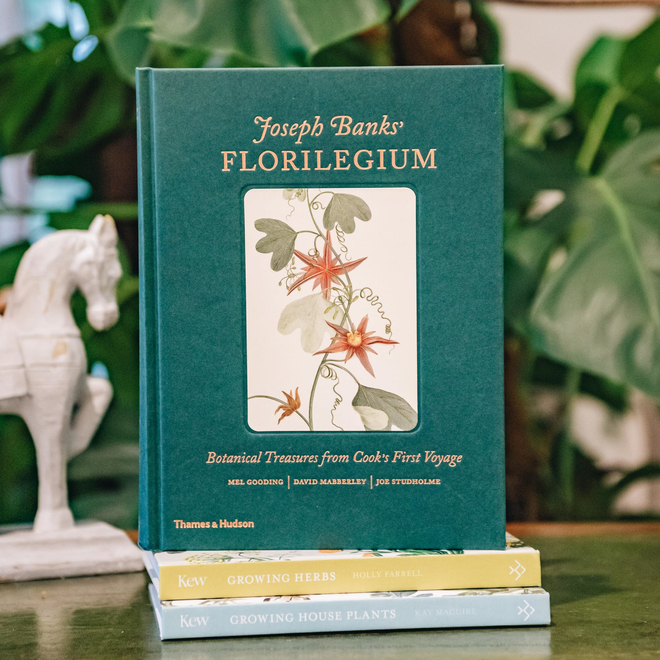 Joseph Banks' Florilegium (the horse bookend is available in store)