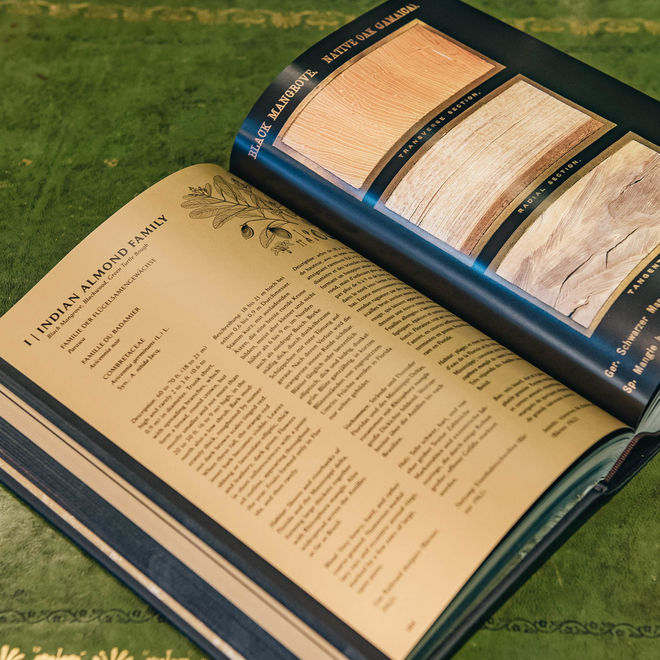 The Woodbook, view of spread