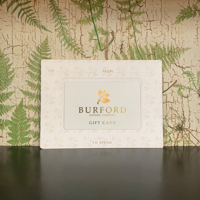 £5000 Burford In Store Gift Card