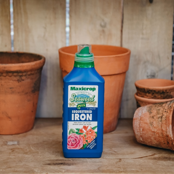 Sequestered Iron and Seaweed Fertiliser