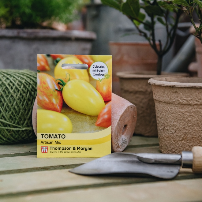 Tomato 'Artisan Mix' seeds - Thompson & Morgan