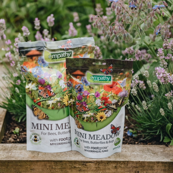 Mini Meadow, Small and Large